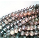 Hint of Gold Silvery Freshwater Pearls String - for Jewellery Making