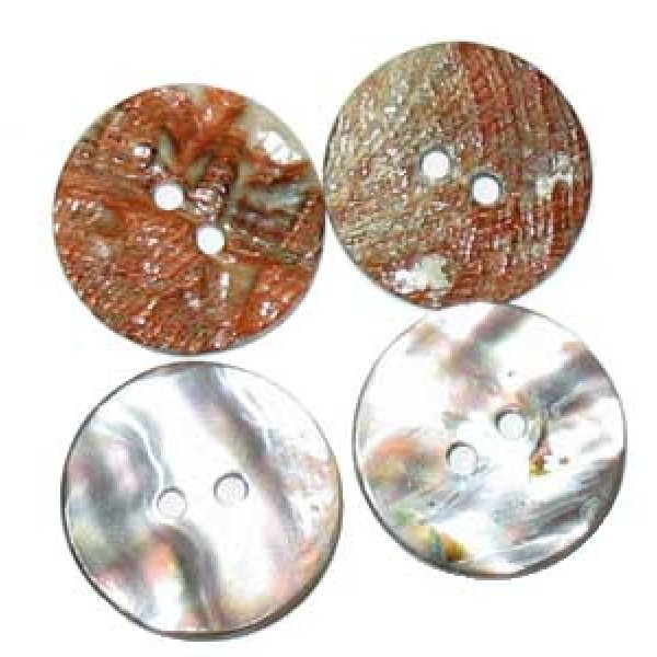 Abalone Shell Beads - for Jewellery Making