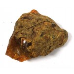 Baltic Toffee Amber Nugget