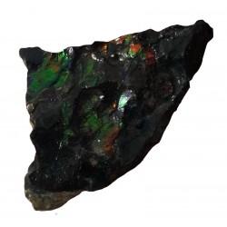 Canadian Ammolite Piece