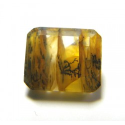 Iron and Dendritic Quartz Gemstone