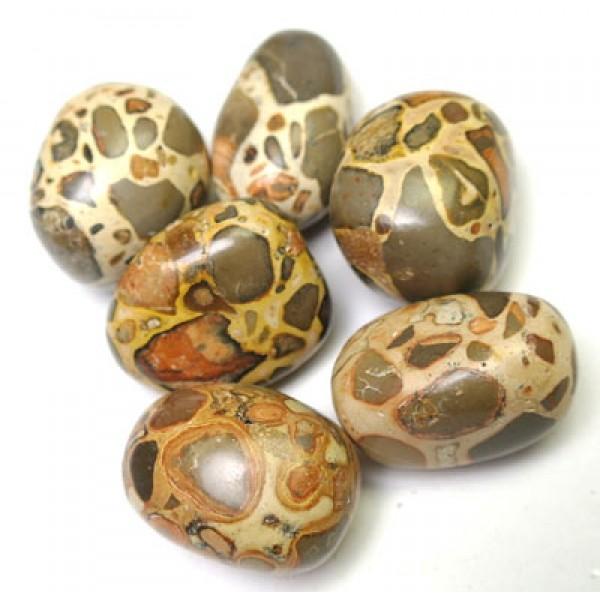 Leopardite tumbletones 24-28mm