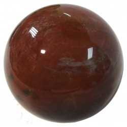 Petrified Wood Crystal Ball