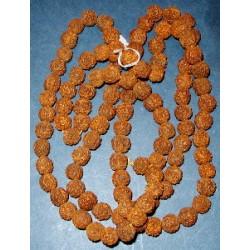 Rudraksha Seeds - for Jewellery Making