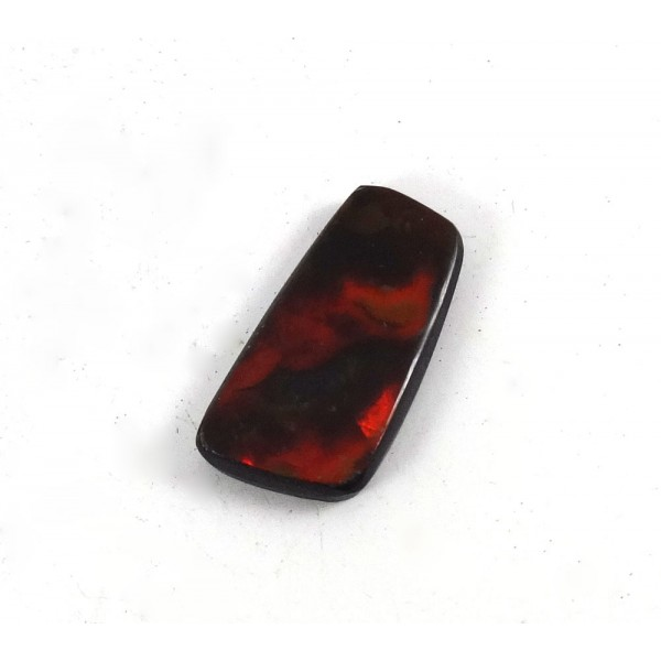 Ammolite Cabochon Fire Colours
