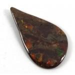 Freeform Drop Ammolite Shape