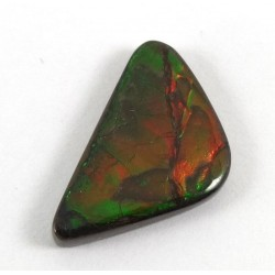 Triangular Shape Ammolite Cabochon