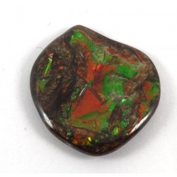 Colourful Ammolite Nugget