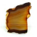Brown Pattern Agate Slice Pendant