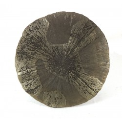 Iron Pyrite Sun Dollar Disc