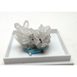 Quartz Cluster with Pyrite Crystals