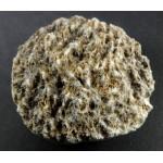 Polished Scolecite Freeform