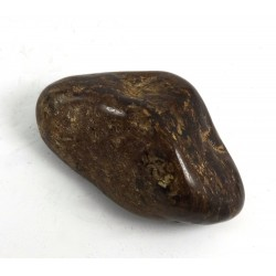 Polished Bronzite Pebble