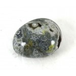 Grey and White Orbicular Jasper Pebble