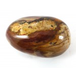 Petrified Wood Palmstone