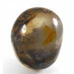 Dendritic Quartz Palm Pebble with Iron and Manganese