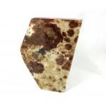 Peanut Wood  Jasper Slice