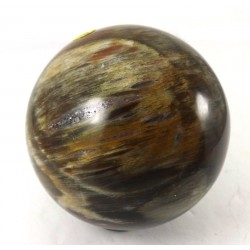 Petrified Wood Crystal Ball 67mm