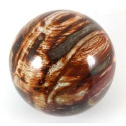 Petrified Wood Crystal Ball 62mm