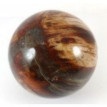 Petrified Wood Crystal Ball 62mm