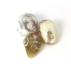 Snake Skin Agate Tumblestones 20-22mm