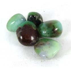 Chrysoprase tumblestones - 20-30mm