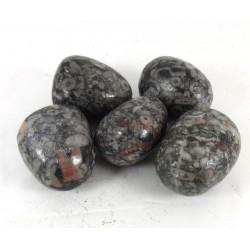 Crinoid Fossil tumblestone 20-30mm
